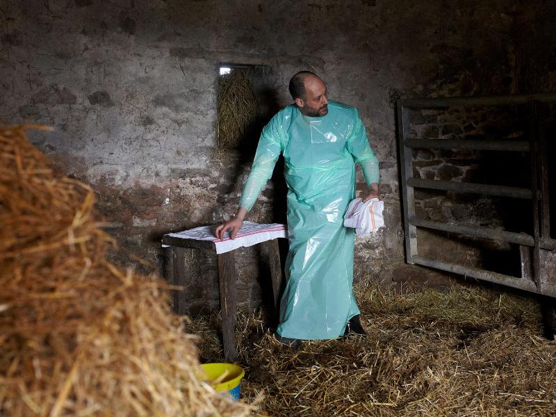 Les vétérinaires ruraux, espèce en voie de raréfaction